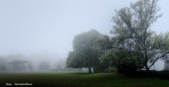lakeside park (Rex Montalban Photography) Tags: rexmontalbanphotography lakesidepark portdalhousie stcatharines niagara fog
