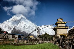 Manaslu from Lho (beudii) Tags: manaslu nepal himalaya lho asien asia berge mountains mountain landscape outdoor fields dorf village trekking hiking wandern snow ice peak schnee buddhism prayer flag gebetsfahnen stupa
