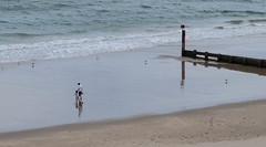 The Beach at Alum Chine (Julian Chilvers) Tags: uk dorset bournemouth alumchine beach sand sea groyne