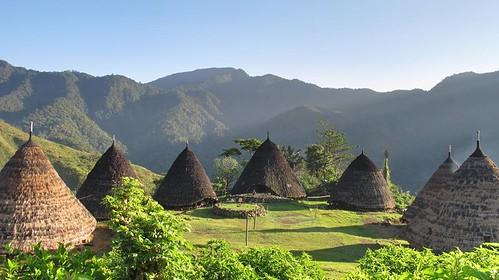wae rebo village and komodo trekking