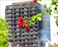 Grenfell Tower Tragedy... (roll the dice) Tags: london londonist kensingtonchelsea w11 sad mad flats council colour rose police ambulance fire brigade emergency death england uk urban classic art bush canon tourism latimerroad press media itv bbc inferno windows water wet canno flames smoke danger flower happy grim victims camera sunny hot