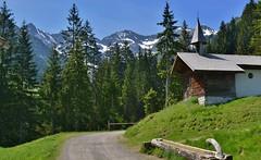 Bodenvorsäß - Bregenzerwald (A) (henkmulder887) Tags: bodenvorsäs bregenzerwald oostenrijk oesterreich a alp bergkristallhütte tobel tobelalpe au schoppernau annalpe