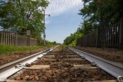 Chicco72-19 (CHICCO72) Tags: treno binari parallele sassi occhio sempre dritto strada ferrata