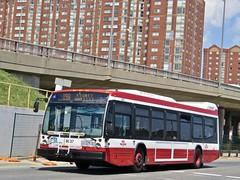 Toronto Transit Commission 8637 (YT   transport photography) Tags: ttc toronto transit commission nova bus lfs