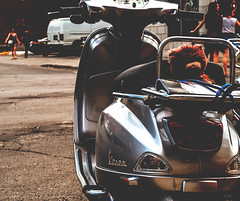 peluche à bord (photosgabrielle) Tags: photosgabrielle petiteitalie peluche moto montréal ville city urban urbain