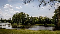 DSC_0065-3Białowie (mrpaymey) Tags: polska landscape białowieża podlasie
