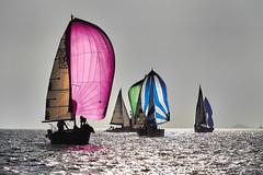 Cardinale Sud (zebrazoma) Tags: saintmalo vespérales régatte voile snbsm cardinale sud sail sailing regatta nikon d4 70200 sea water boat ship yacht sailboat watercraft kevlar