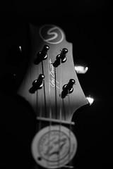 170627_155608_WAZ_2411-2 (Waleed Alzuhair) Tags: ukulele greg bennett gregbennett uk50