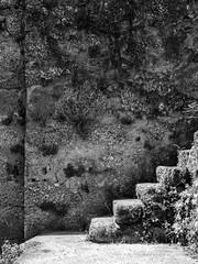 _5160448 (tibiovesea) Tags: blacks europe portugal sevilha exif:focallength=25mm exif:lens=olympusm1240mmf28 geocountry exif:make=olympusimagingcorp exif:isospeed=100 geostate camera:model=em1 exif:aperture=ƒ50 geolocation camera:make=olympusimagingcorp exif:model=em1 geocity