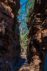 Gateway (MrNonesuch) Tags: alligatorgorge southaustralia outback