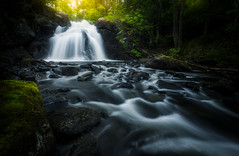 Waterfall (Arvid Björkqvist) Tags: water waterfall fall creek forest mood dark trees light moss green grass flow stream motion sun rocks sweden
