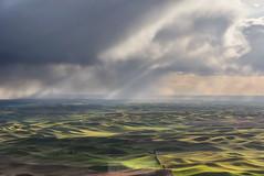 Stormy Palouse II (NikonDigifan) Tags: rainstorm palouse palousehills steptoebutte easternwashington washington agriculture storm pacificnorthwest wheat peas lentils niksoftware nikond750 nikon28300 mikegassphotography