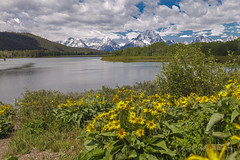 The day after the rains (mghornak) Tags: grandtetonnationalpark grandtetons oxbowbend canon canoneos5dmarkii clouds mountains water landscape june2017