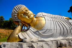 A DI DA PHAT QUAN THE AM BO TAT DAI THE CHI BO TAT GUANYIN KWANYIN BUDDHA 8854 (ketnoivietnam) Tags: amazing affectionate amitabha architecture art asia avalokitesvara awesome bangkok beautifull beijing palace bhutan bodhisattva bouddha buddha tooth relic temple buddhism buddhist china chinatown chua excellent fantastic flickraward gold golden guanyin hainan hdr history hong kong indian information japan korea kuanim kuanyin kwanyin laos 观音 佛 寺像 仏陀