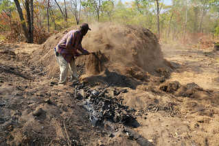 Charcoal production in Nyimba, Zambia