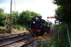 IMGP1775 (Steve Guess) Tags: watercressline midhants steam railway heritage line ropley alresford hampshire england gb uk bullied pacific battleofbritain34052 34053 lorddowding sirkeithpark 34052 braunton battleofbritain 34046 double heading
