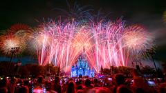 Magic Kingdom - Celebrate America! (Jeff Krause Photography) Tags: 4th castle celebration cinderella day fireworks independence july kingdom magic main park street wdw theme orlando florida unitedstates us