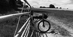 Abbots Bromley - Cannock Chase July 2017 (adventurercyclist) Tags: 650b gravelbike bikepacking caminotitanium camino sonder alpkit