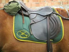 CARABINEROS DE COLOMBIA (maralolita1966) Tags: carabineros soraca tunja colombia caballos silla boyacá boyaca equitación ataleje policia policía equino