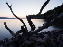 rest (AnteKante) Tags: wood meer blauestunde felsen croatia wellen langzeitbelichtung rocks ruhig senj blue bluehour kroatien evening blau longexposure sea abend natur calm holz hrvatska