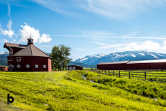 In the round (Culinary Fool) Tags: joseph usa 2017 june culinaryfool red oregon brendapederson farm mountain wallowamountains ranch barn or fence