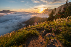 Above the clouds (Laura Jacobsen) Tags: bandera banderamountain beargrass landscape mountains snoqualmiepass sunburst sunset trails wildflowers