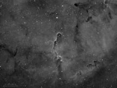 IC 1396 - vdB 142 - Ha (Paolo De Salvatore) Tags: trunk nebula ladispoli skywatcher esprit 10micron gm1000 hps moravian g28300 ccd astrodon ha ic1396 vdb142 elephant
