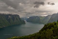 Stegastein Aurland Norway (Joke.Benschop) Tags: beautifulnorway jokebenschop landscape landschap nikonafs2470f28edif nikond810 noorwegen norway uitzichtpuntstegasteinaurlandnorway wwwjokebenschopcom