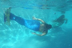_DSC6750 (Daniel Breitenbach) Tags: mermaid blue underwater
