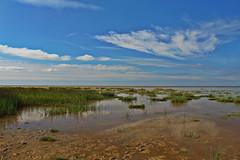 IMG_0708 (jaybluejeans94) Tags: wales beach sun summer landscape amateur sand sea nature uk prestatyn gronant sky
