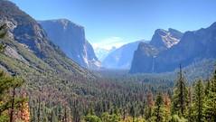 2017 - Vacation - California Nuggets via Village Tours (zendt66) Tags: zendt66 zendt nikon d7200 hdr photomatix colorado utah nevada california yosemite arches national park vacation coach trip forest