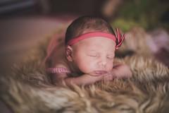 11/365 (Mááh :)) Tags: newborn ensaio baby bebê 365 365dias 365days