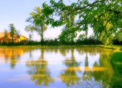 * Il laghetto delle quattro stagioni * The small lake of the four seasons * (argia world 1) Tags: laghetto alberiverdi pond greentrees riflessi reflections casa acqua cielo water sky impressionismo impressionism