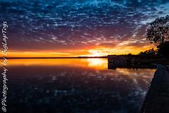 IMG_5930 (biglaptogs) Tags: barmera lakebonney riverland sa states sunsetsunrise