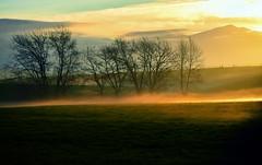 Sun rays over the ground fog (Gadgetman@Nikon) Tags: landscape sunhaze sunset sun fog rural elements