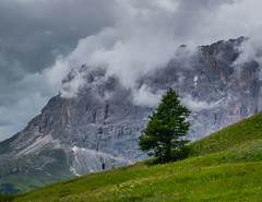 Downwards (bjorbrei) Tags: mountain sky clouds sassolungo sasslongher langkofel dolomites dolomiten dolomiti dantercepies selva wolkenstein valgardena gröden gherdëina tyrol tirol tirolo italiy italia