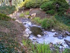 20 Frozen Stream (megatti) Tags: christmas frozen ice lahaska pa peddlersvillage pennsylvania stream