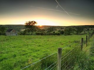 Heathy Roods farm