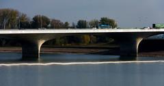 _DSC7611 (durr-architect) Tags: spiegelwaal ruimte room river waal nijmegen netherlands high water flood island bridge nevengeul