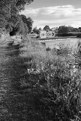 DSC06276 (billdsym) Tags: annan scotland bw river water