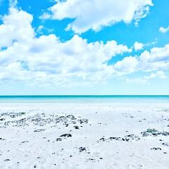 Balka beach (hiholtet) Tags: whitesand bornholm beach