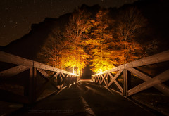 Come in (el_farero) Tags: night bridge election canon ordesa fear forest landscape trees