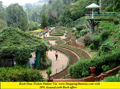 Botanical-Gardens-Ootacamund-Ooty (shoppingmantraz2) Tags: online travel tickets shoppingmantraz ooty tourism discount coupon offers