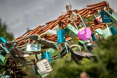 Love Tree (Wayne Cappleman (Haywain Photography)) Tags: haywain photography wayne cappleman farnborough hampshire beaulieu national motor museum love tree