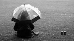 Meadows Festival 2017 033 (byronv2) Tags: meadows meadowsfestival meadowsfestival2017 park summer blackandwhite blackwhite bw monochrome festival candid peoplewatching street edinburgh edimbourg scotland woman umbrella rain weather raining people sit sitting seated