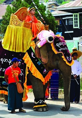 Elephant parade (@Mark_Eveleigh) Tags: asia asian burma burmese east indochina myanmar south kalaw heho shan state ceremony buddhist festival procession carnival costume traditional elephant dressed adorned decorated