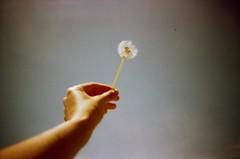 untitled by Martha Swallow -