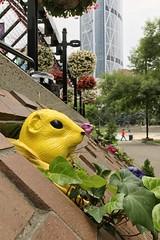 Yellow ground squirrel (Ricky Leong) Tags: calgary alberta canada random urban photowalk art publicart ca