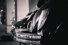 Volkswagen Beetle (Jeferson Felix D.) Tags: volkswagen beetle vw fusca volkswagenbeetle volkswagenfusca vwbeetle vwfusca canon eos 60d canoneos60d 18135mm rio de janeiro riodejaneiro brazil brasil worldcars photography fotografia photo foto camera