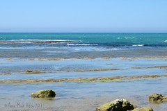 IL MARE A SCALA DEI TURCHI || DE ZEE BIJ DE TURKSE TRAPPEN || THE SEA AT THE TURKISH STEPS (Anne-Miek Bibbe) Tags: sicilië sicilia sicily oostsicilië italia italië italy zee sea turksetrappen canonpowershotsx280hs annemiekbibbe bibbe 2017 scaladeiturchi turkishsteps mare